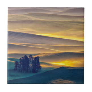 Carreau Rolling Hills de blé au lever de soleil | WA