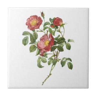 Carreau Rose rouge floral de fleurs vintages de l'amour