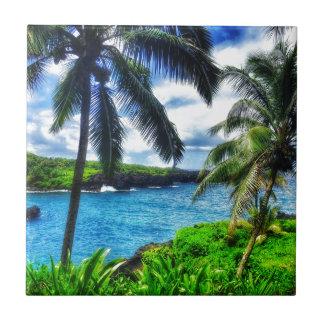 Carreau Scène du Hawaïen IMG_1122 4