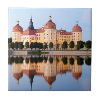 Carreau Schloss Moritzburg