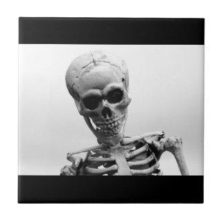 Carreau Squelette