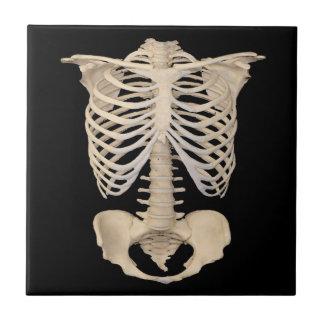 Carreau Squelette effrayant de cage de zombi de partie de