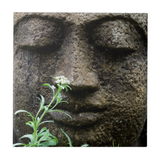 Carreau Statue en pierre de jardin avec la fleur
