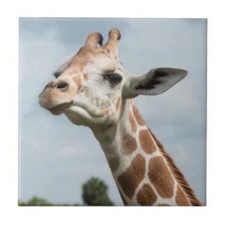 Carreau Tête de girafe parmi les nuages