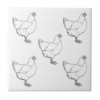 Carreau Troupeau de poulets de race d'héritage - 5 poules