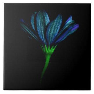 Carreau Tuile bleue de fleur