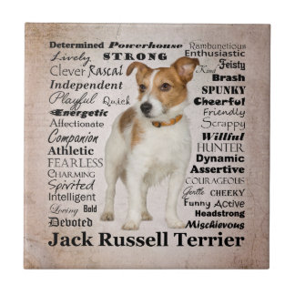 Carreau Tuile de traits de Jack Russell