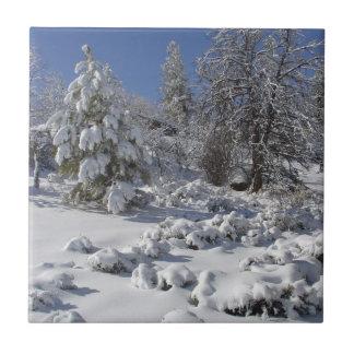 Carreau Tuile d'hiver du Colorado