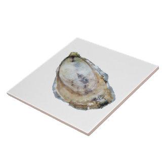 Carreau Tuile d'huître - concevez un blanc