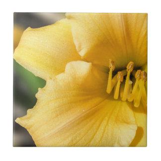 Carreau Tuile en céramique de photo de lis jaune excentré