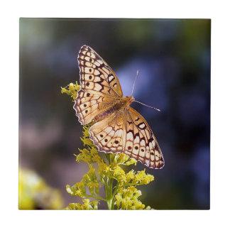 Carreau Tuile en céramique de photo de papillon
