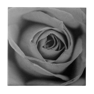 Carreau Tuile en céramique de photo de rose