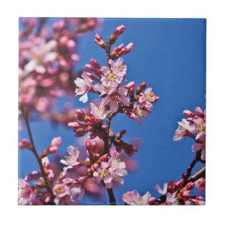 Carreau Tuile japonaise bleue émouvante de fleurs de