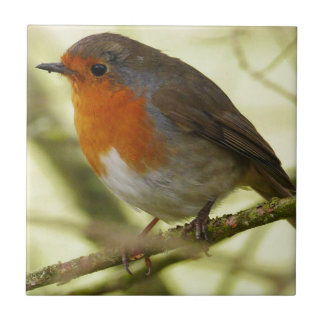 Carreau Tuile rouge de Robin