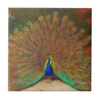 Carreau Tuile vintage de peinture de paon