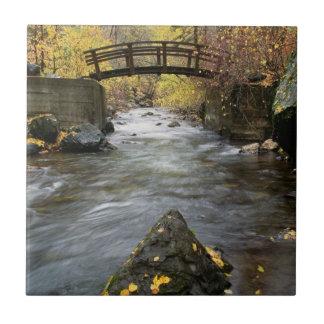 Carreau Une rivière fonctionnant par le canyon américain