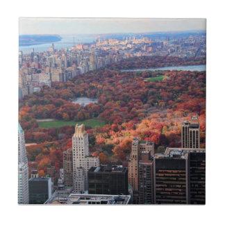 Carreau Une vue d'en haut : Automne dans le Central Park