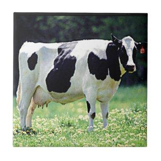 Carreau Vache laitière du Wisconsin