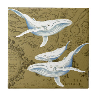 Carreau Vert olive de famille de baleines bleues