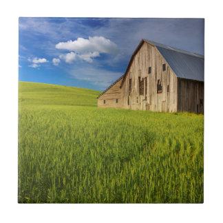 Carreau Vieille grange dans le domaine du blé de mars
