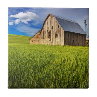Carreau Vieille grange entourée par le gisement 1 de blé