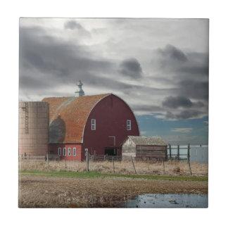 Carreau Vieille grange sur la prairie