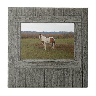 Carreau Vieux cheval en bois de peinture de fenêtre