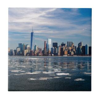 Carreau Ville Manhattan de New York City d'horizon de New