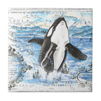 Carreau Violation de la carte antique d'orque
