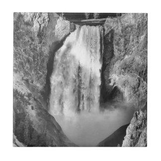 Carreau Yellowstone supérieur tombe en noir et blanc
