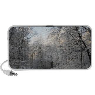 Carrefours de forêt d hiver haut-parleur de voyage