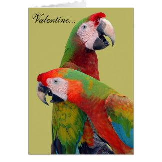 Carte 007 de Valentine de perroquet