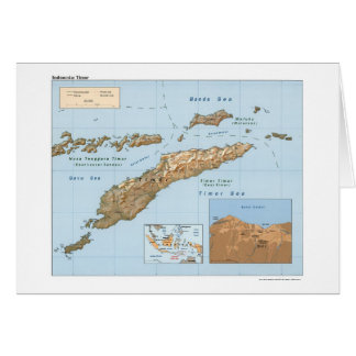 Carte 1999 de l'Indonésie Timor