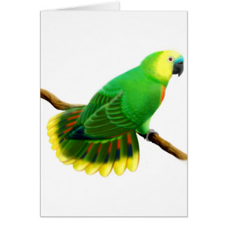 Carte affrontée bleue de perroquet d'Amazone