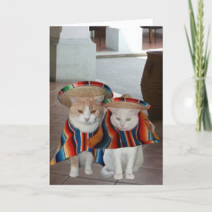 Cartes Mexicain D Anniversaire Zazzle Fr