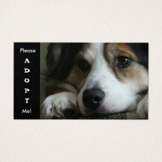 Carte australienne d'abri de chien d'utilité de