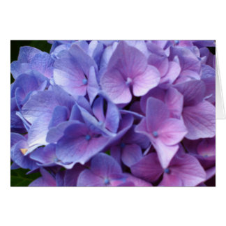 Carte bleue d'hortensias