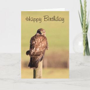 Cartes Faucon d anniversaire   Zazzle.fr 61ea0dc88a4