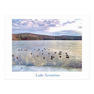 Carte-Canard de Scranton de PA-Lac de Scranton Carte Postale