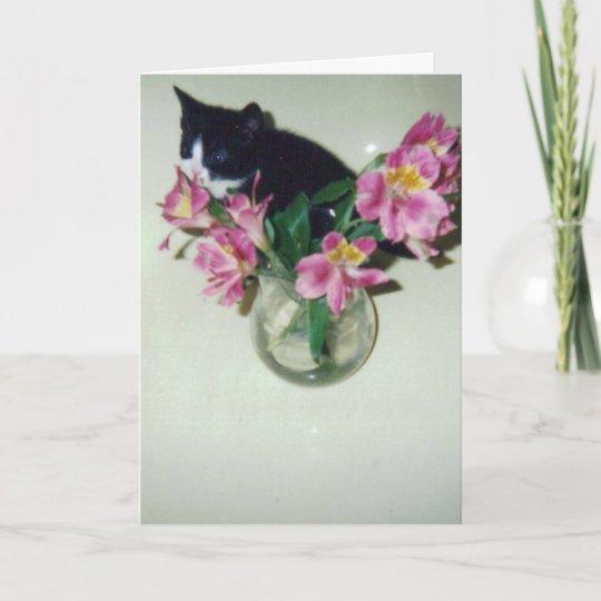 Carte Chat De Joyeux Anniversaire Avec Des Fleurs Dans Zazzle Fr