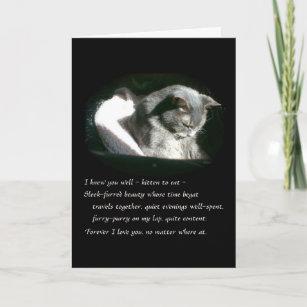 Carte Chat gris triste de Kitty de sympathie d'animal