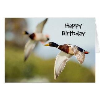 Carte d anniversaire de canard ou toute occasion