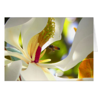 Carte d'abeille de magnolia et de miel