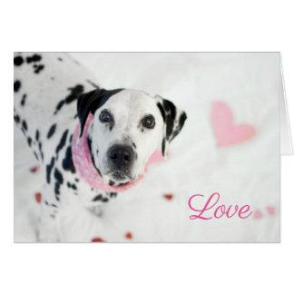 Carte dalmatienne de Valentines