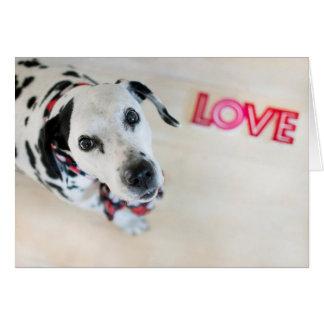 Carte dalmatienne de Valentines d'amour