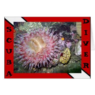 Carte d'anémone de plongeur autonome