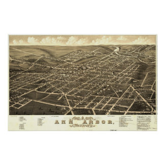 Carte d'Ann Arbor Birdseye Posters