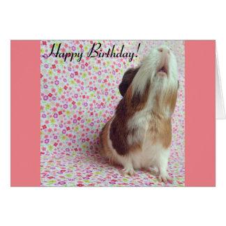 Carte d'anniversaire adorable de cobaye