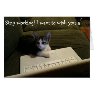Carte d'anniversaire avec le chat : Cessez le