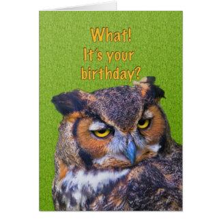 Carte d'anniversaire avec le grand hibou à cornes